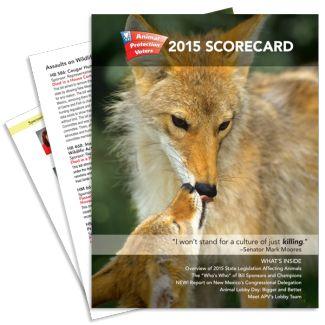 scorecard-thumbnail-325x325-compressor