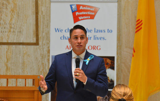 Animal Protection Voters endorses Howie Morales to be New Mexico's next Lieutenant Governor