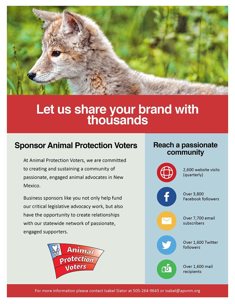 APV Sponsorship Brochure